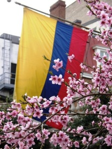The Colombian Flag. Photo by Krosseel (CC BY 2.0)