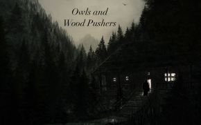 Owls and Wood Pushers, Part2